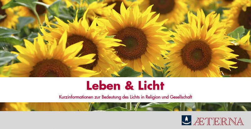 AETERNA Newsletter Leben & Licht 2015-02